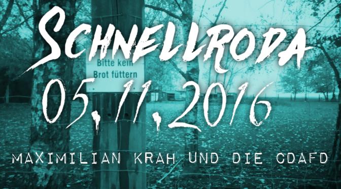 So geht sächsisch: Maximilian Krah und die CDAfD